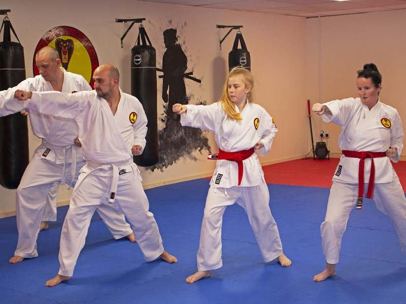 Teen & Adult Martial Arts (Ages 12+) in Shotton