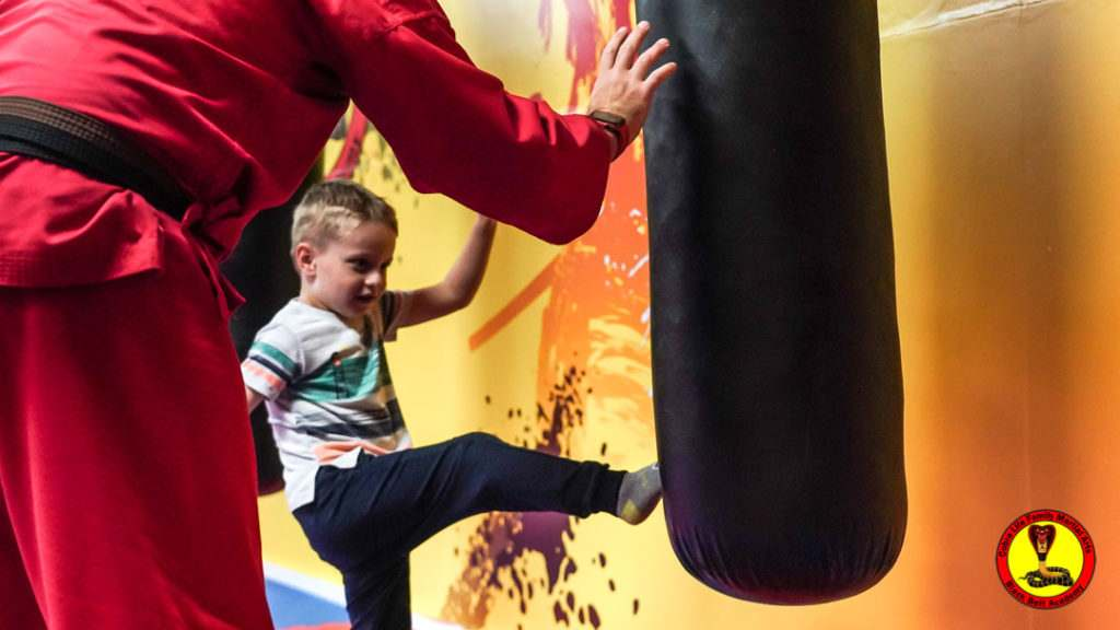 A9 01002 1024x576, Cobra Life Family Martial Arts Black Belt Academy Shotton, Flintshire