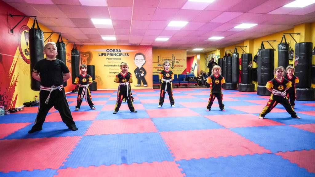 A9 01014 1024x576, Cobra Life Family Martial Arts Black Belt Academy Shotton, Flintshire