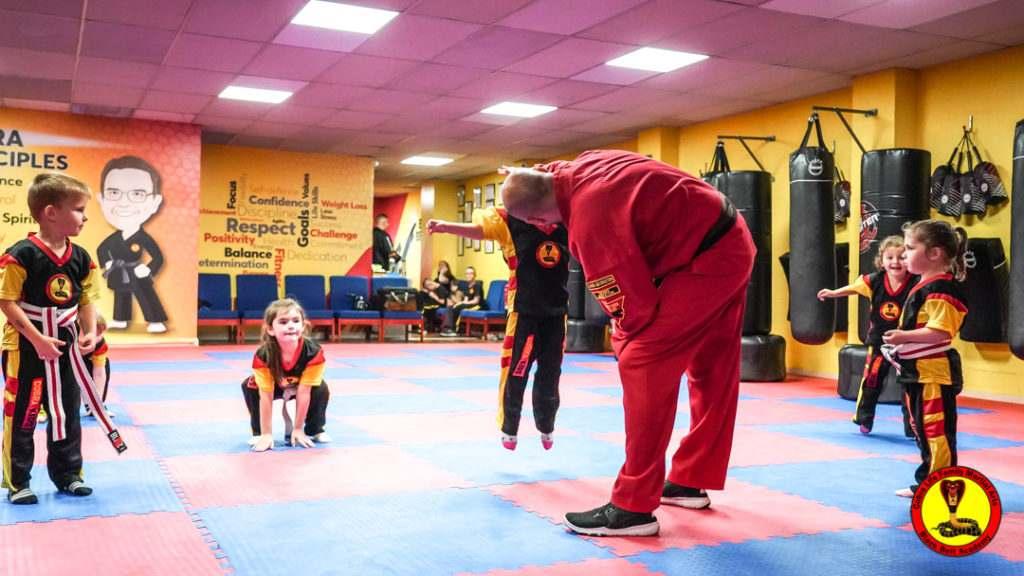 A9 01033 1024x576, Cobra Life Family Martial Arts Black Belt Academy Shotton, Flintshire