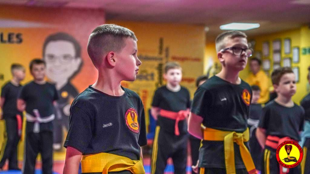 A9 01115 1024x576, Cobra Life Family Martial Arts Black Belt Academy Shotton, Flintshire