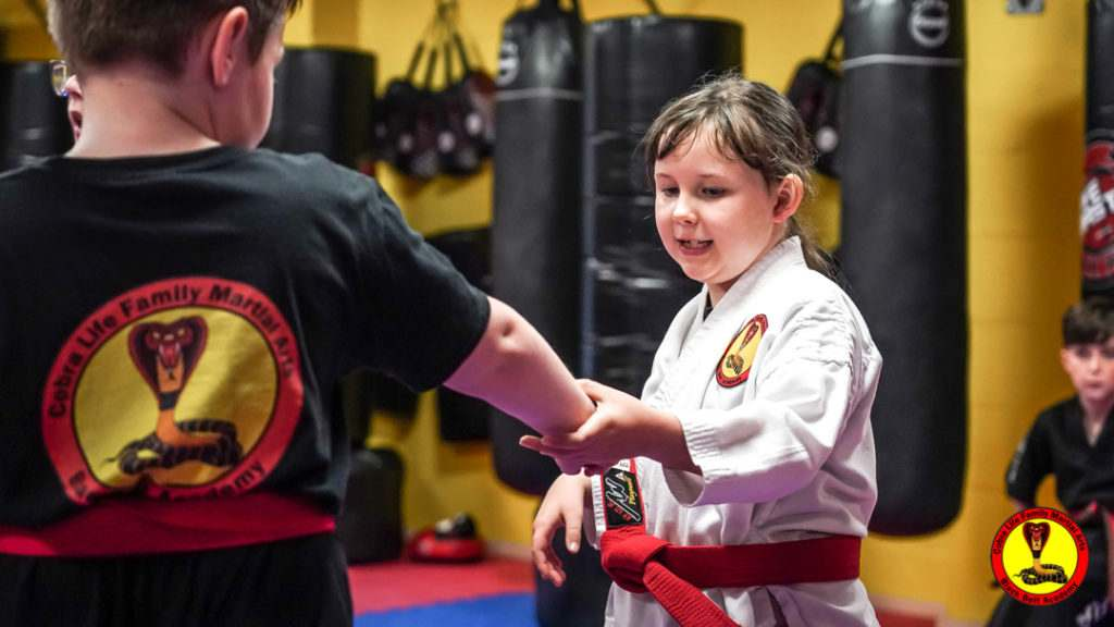 A9 01142 1024x576, Cobra Life Family Martial Arts Black Belt Academy Shotton, Flintshire