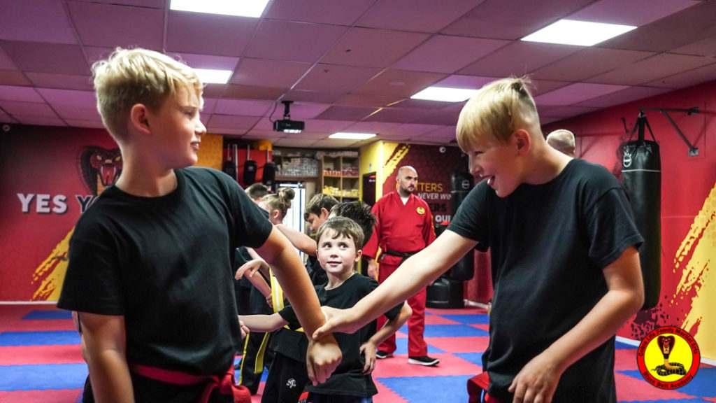 A9 01145 1024x576, Cobra Life Family Martial Arts Black Belt Academy Shotton, Flintshire