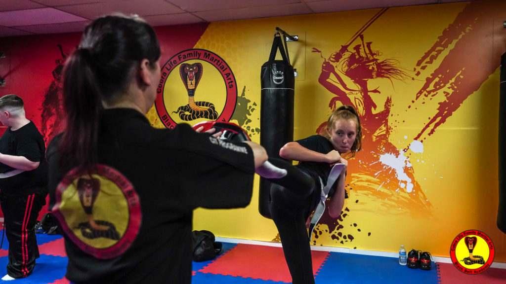 A9 01184 1024x576, Cobra Life Family Martial Arts Black Belt Academy Shotton, Flintshire