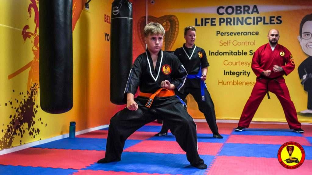 A9 01208 1024x576, Cobra Life Family Martial Arts Black Belt Academy Shotton, Flintshire