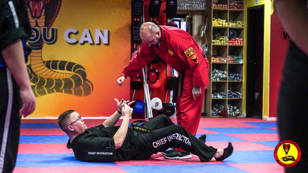 A9 01231 1024x576, Cobra Life Family Martial Arts Black Belt Academy Shotton, Flintshire